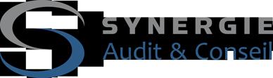 Synergie Audit et Conseil